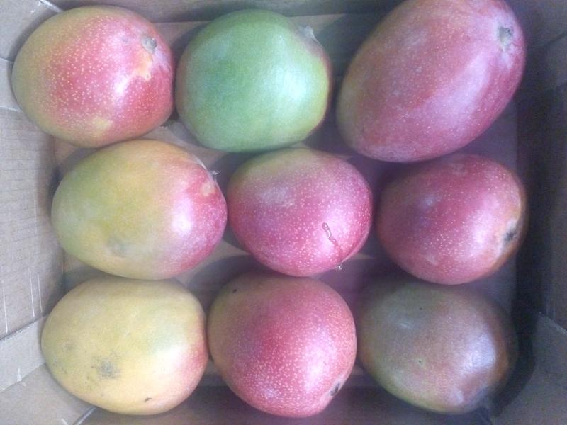 Фрукты сдоставкой: манго, авокадо...