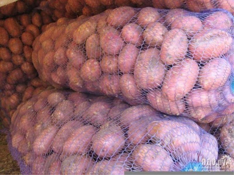 Картофель оптом со склада в Хабаровске.