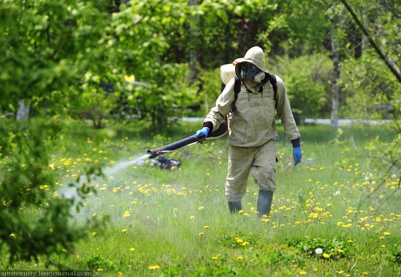 Обработка от клещей и комаров