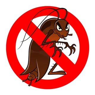 Уничтожение клопов тараканов муравьев