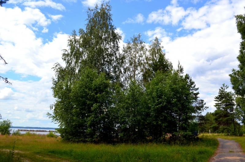 особенность специализированных купить участок на горьковском море сейчас