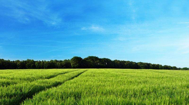 Продается земельный участок 25соток для ИЖС, все коммуникации  на участке