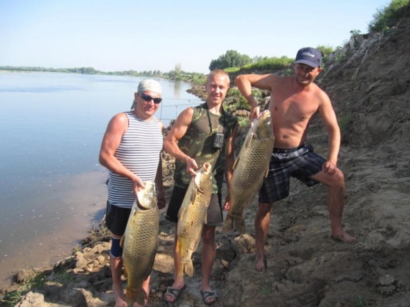 отчеты о рыбалке в ахтубинске