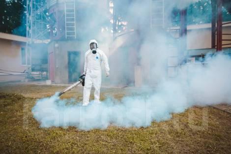 Дезинфекция насекомых, грызунов, плесени, запаха