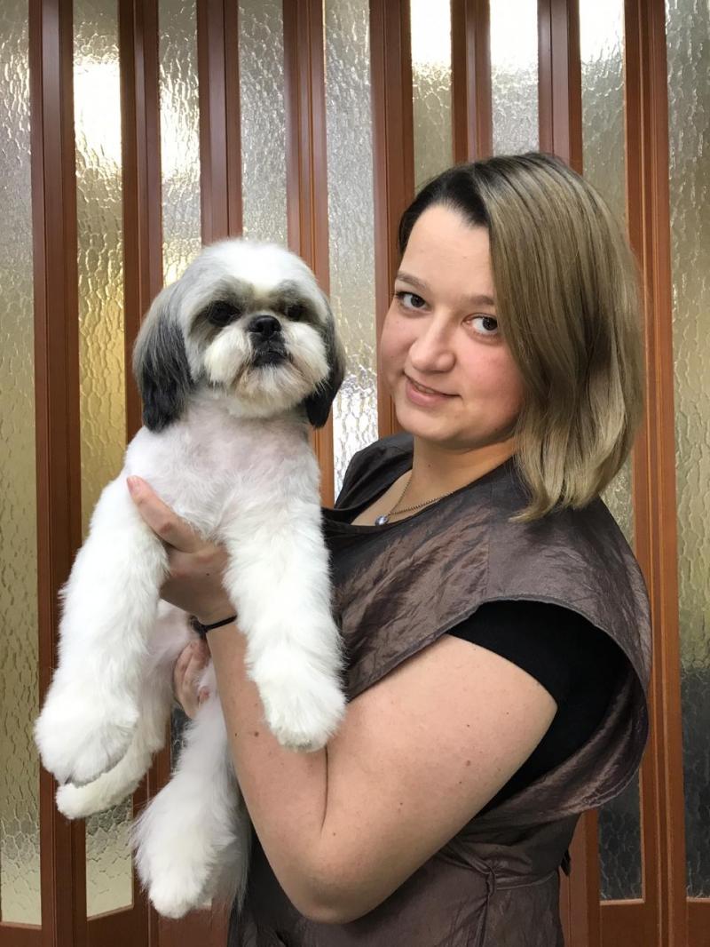 Стрижка собак с выездом на дом
