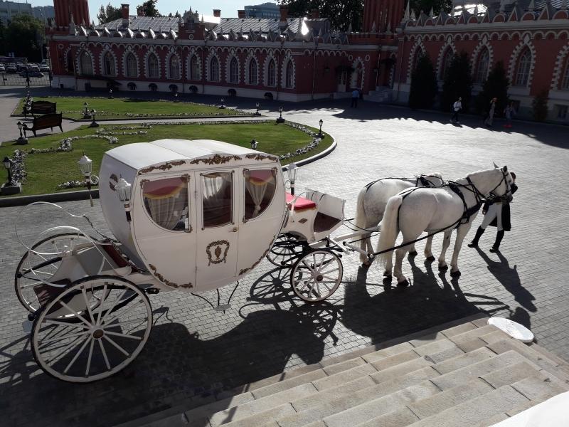 кареты и лошади для съемок и праздников