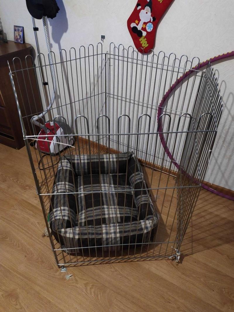 Вольер и лежак для собаки
