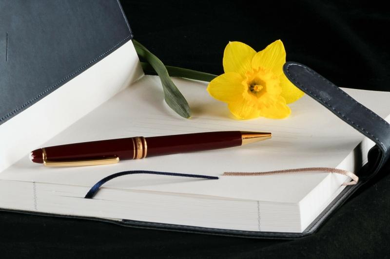 Бухгалтерские услуги, сдача отчетности, регистрация ооо и ип, юридические услуги