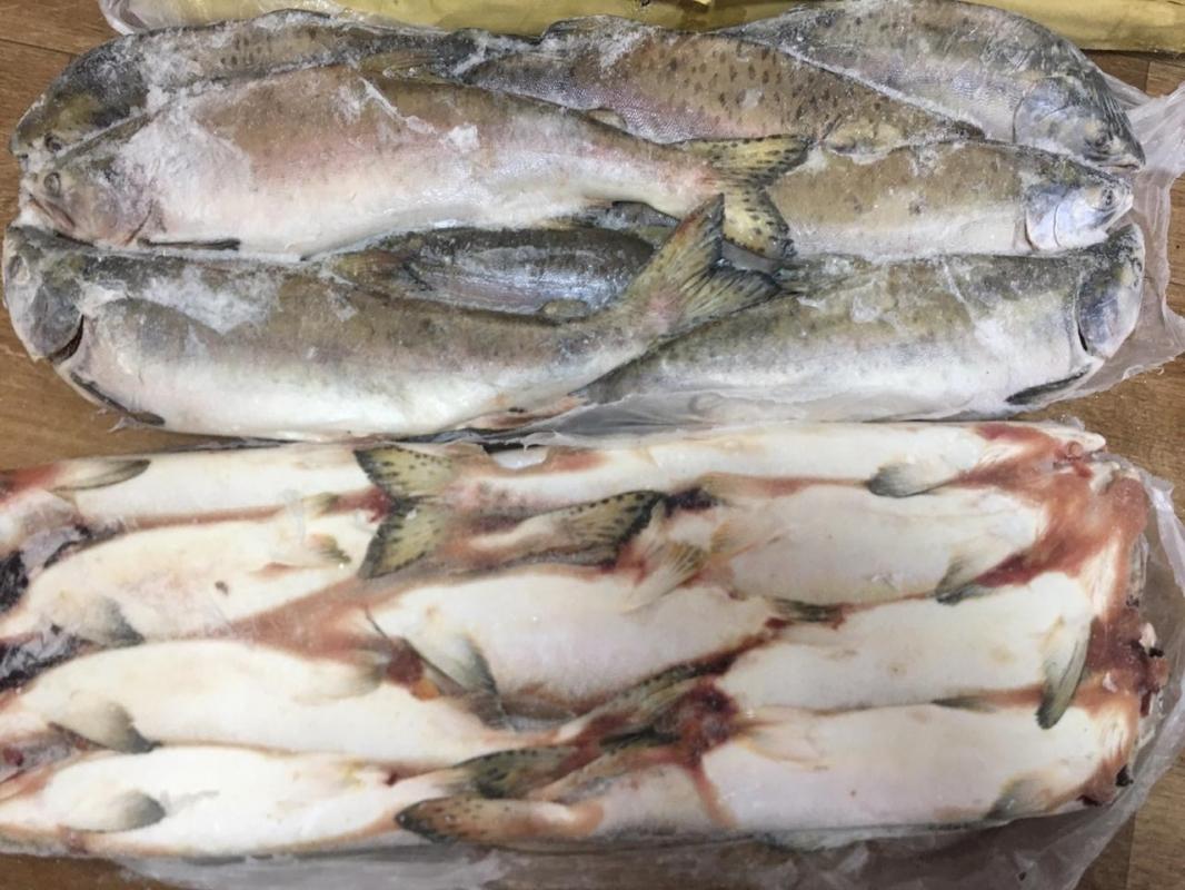 Свежемороженная рыба и морепродукты. Высокое качество и низкие цены. ОПТ