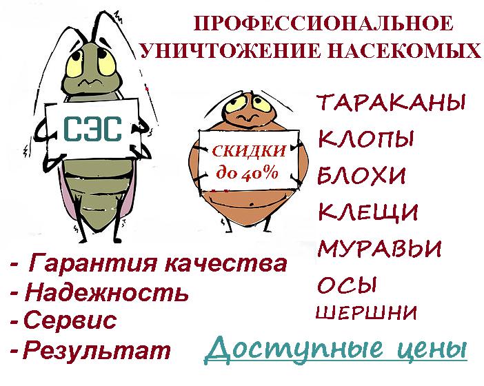 Уничтожение насекомых, тараканы, клопы, блохи. Конфиденциально. Гарантия