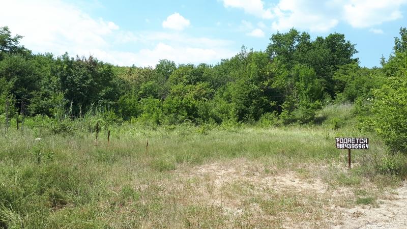 Продам земельный участок в лесу (Убинская, дубовый лес, крайний:без соседей)