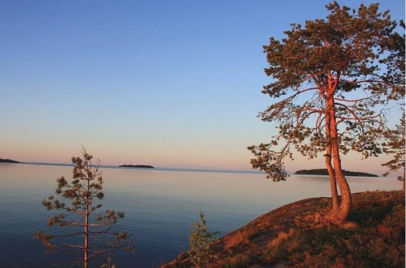 Земельный участок 8 га на берегу Ладожского озера