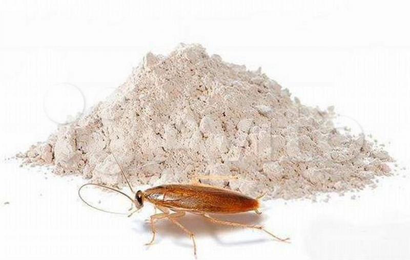 Средство от тараканов Тиурам от 60р