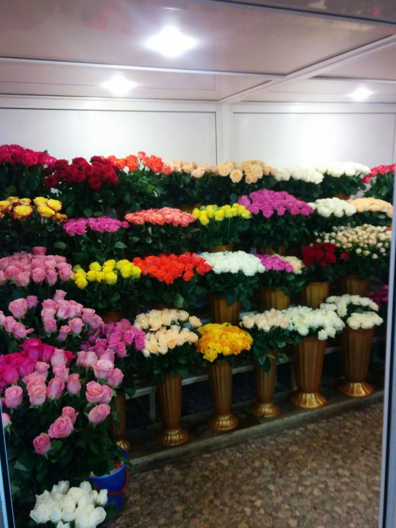 Цветы врозницу иоптом Краснодар!