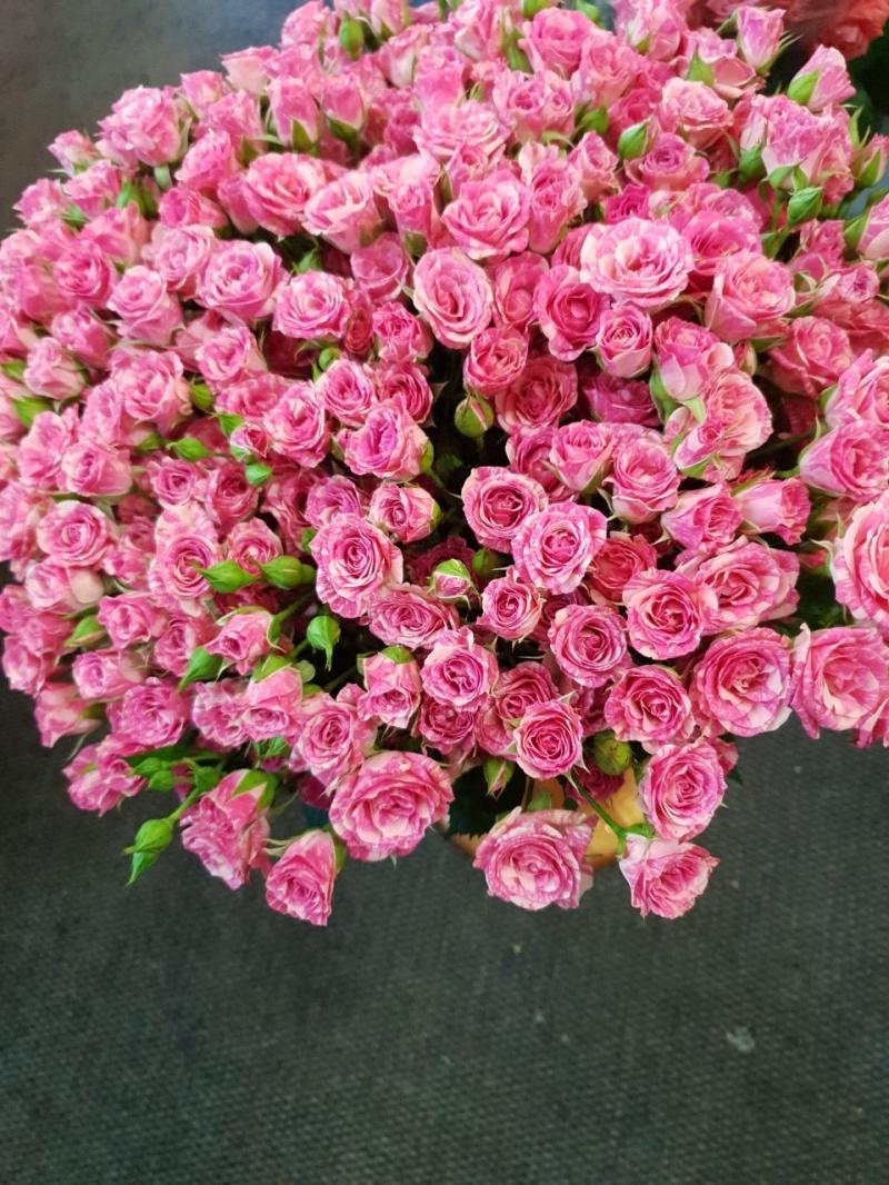 Розы букет цена опт розница украина, поставка цветов