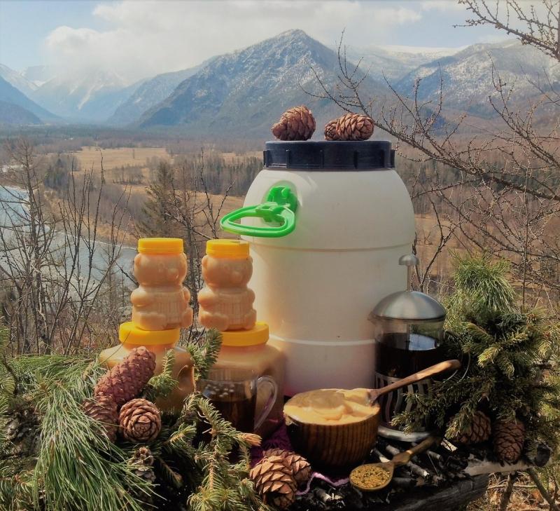 Продаю с личной пасике Алтайский мёд и Сыродавленное масло