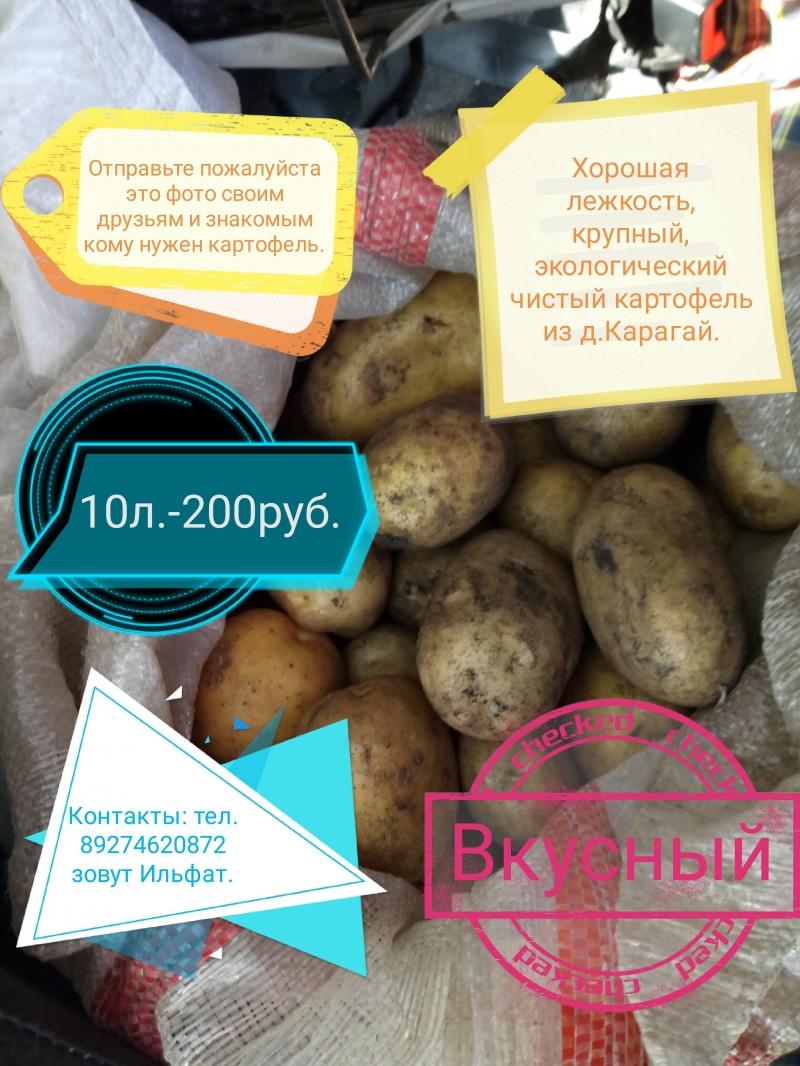 Картофель деревенский