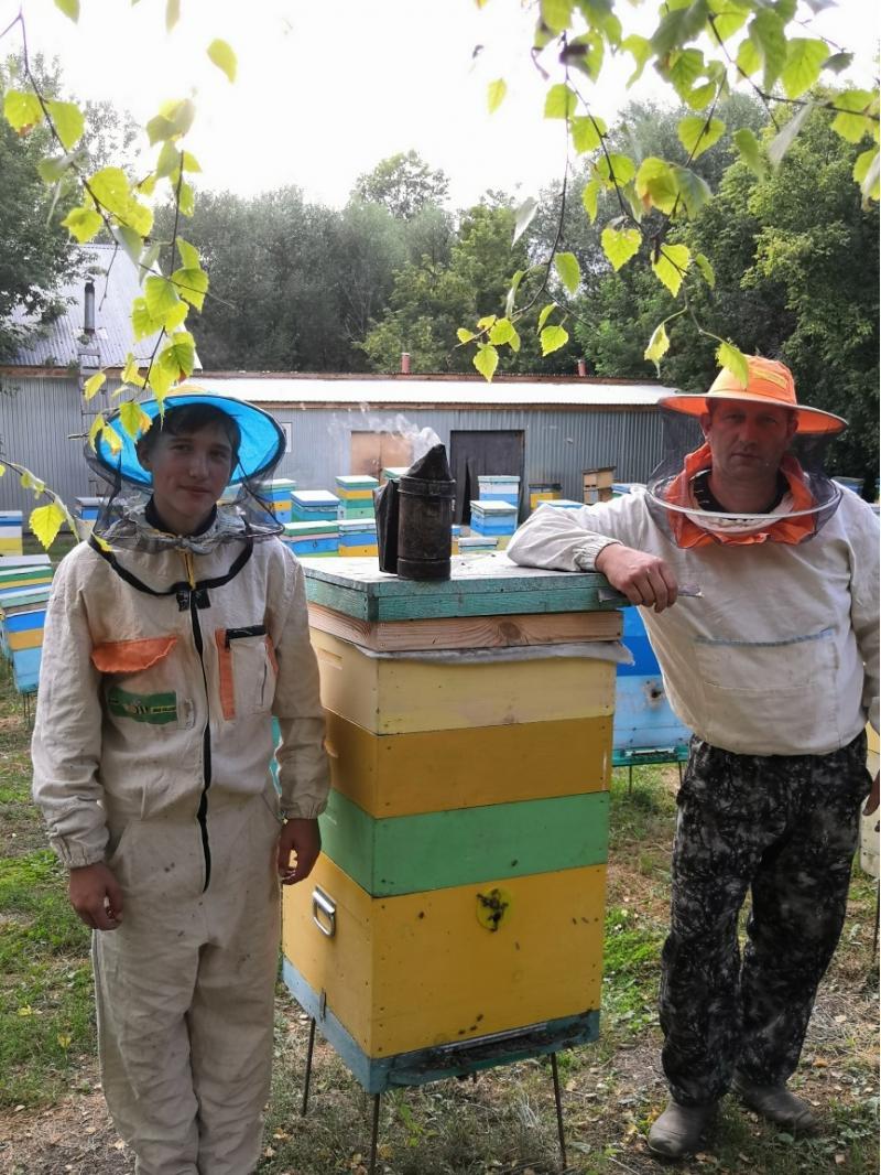 Продам гречишный мед!