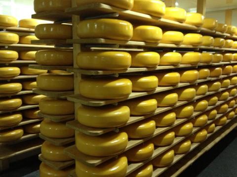 Сыр заводы из голландии под ключ