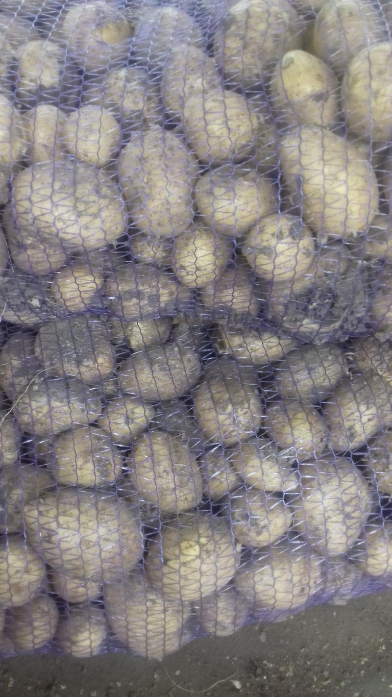 Овощи с доставкой по городу Иркутск