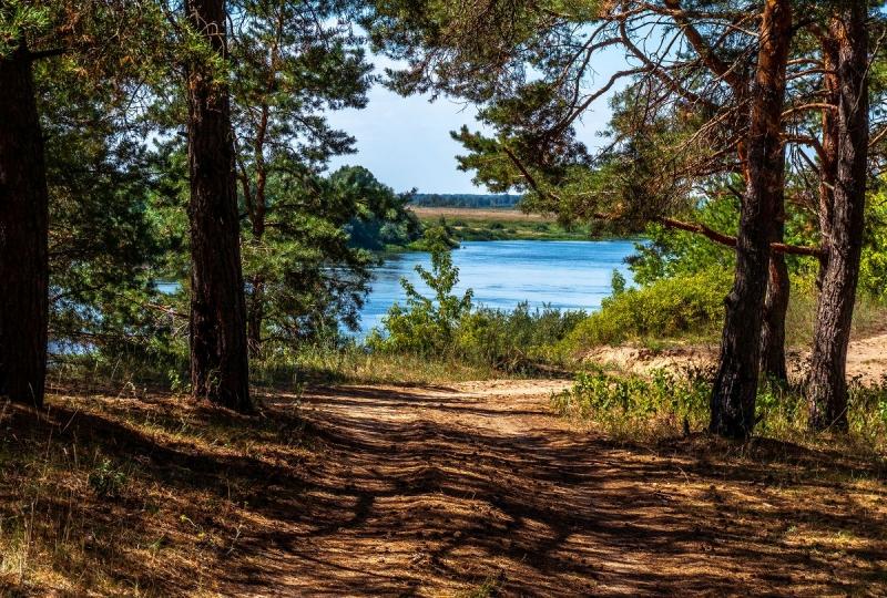 Продается земельный участок в Солотче 15 соток