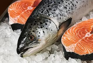 Свежая Рыба- Форель Карелии
